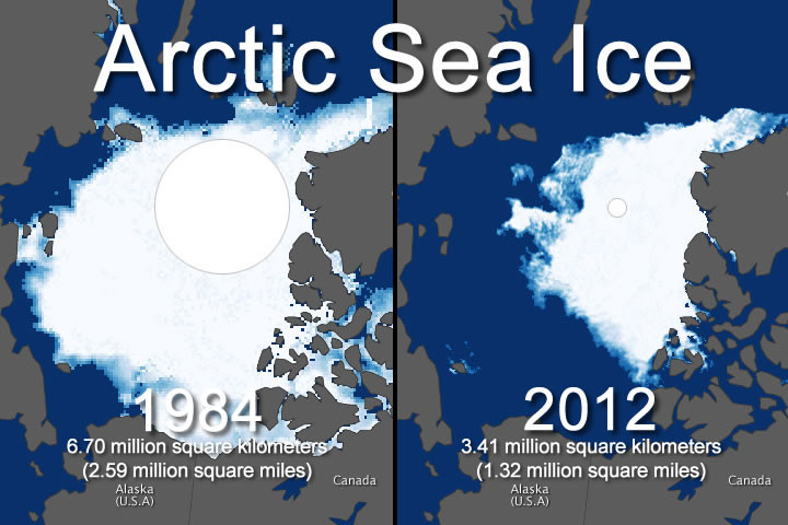 """climate change arctic essay Free essay: the increase in temperature is expected to cause a """"northward expansion"""" of vegetation this means that the tundra is expected to move into the."""