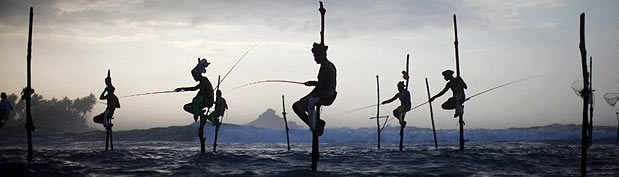 Fisherman in Sri Lanka.jpg