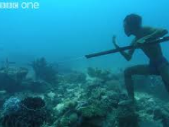 [image for Culture Spotlight Bajau.png]
